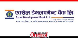 excel development bank
